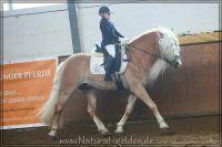 nk2012_03_04_OHD_HS_Wunderknabe_234