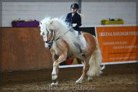 nk2012_03_04_OHD_HS_Wunderknabe_250