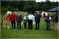 cc2012_07_01_OHD_Jungpferdeschau_007