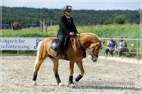 vv2013_06_22_Haflinger_FUN_Turnier_Kuer_015