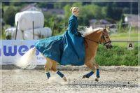 vv2013_06_22_Haflinger_FUN_Turnier_Kuer_054