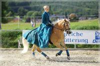 vv2013_06_22_Haflinger_FUN_Turnier_Kuer_055