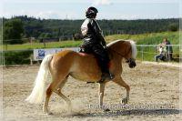 vv2013_06_22_Haflinger_FUN_Turnier_Kuer_197