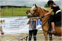 vv2013_06_22_Haflinger_FUN_Turnier_Reiterspiele_074