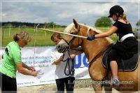 vv2013_06_22_Haflinger_FUN_Turnier_Reiterspiele_076