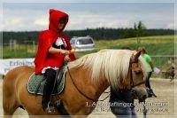 vv2013_06_22_Haflinger_FUN_Turnier_Reiterspiele_226