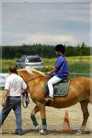 vv2013_06_22_Haflinger_FUN_Turnier_Reiterspiele_316