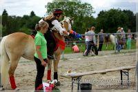 vv2013_06_22_Haflinger_FUN_Turnier_Reiterspiele_482