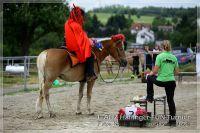 vv2013_06_22_Haflinger_FUN_Turnier_Reiterspiele_486