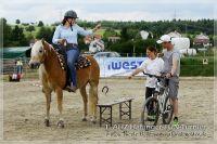 vv2013_06_22_Haflinger_FUN_Turnier_Team_027