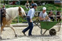 vv2013_06_22_Haflinger_FUN_Turnier_Team_037