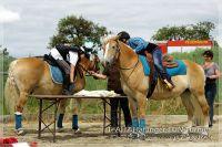 vv2013_06_22_Haflinger_FUN_Turnier_Team_060