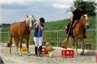 vv2013_06_22_Haflinger_FUN_Turnier_Team_119
