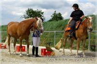 vv2013_06_22_Haflinger_FUN_Turnier_Team_121