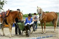 vv2013_06_22_Haflinger_FUN_Turnier_Team_132