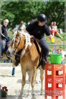 vv2013_06_22_Haflinger_FUN_Turnier_Trail_008