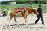 vv2013_06_22_Haflinger_FUN_Turnier_Trail_018
