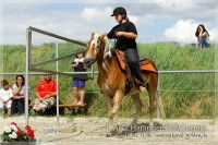 vv2013_06_22_Haflinger_FUN_Turnier_Trail_026