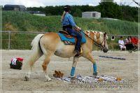 vv2013_06_22_Haflinger_FUN_Turnier_Trail_047