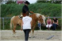 vv2013_06_22_Haflinger_FUN_Turnier_Trail_086