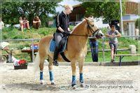 vv2013_06_22_Haflinger_FUN_Turnier_Trail_130
