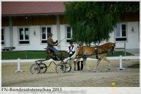 aaa2013_08_Bundesstutenschau_037_Orellia_022