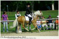 aaa2013_08_Bundesstutenschau_040_Helene_028