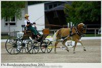 aaa2013_08_Bundesstutenschau_041_Rosella_029