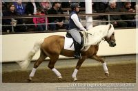 cc2014_03_02_OHD_Hengstschau_22_NottingHill_013